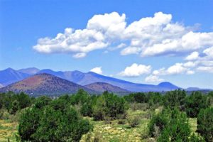 Things to do in Flagstaff ar